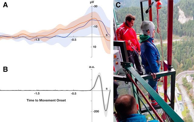 Fig. 3A: EEG recordings before 192-meter bungee jumping evidenced a negative potential shift over the vertex electrode (Cz) with the characteristic features of the Bereitschaftspotential (BP) (orange: jumper 1, blue: jumper 2; average over all trials). Orange and blue shaded areas indicate the 95 % confidence intervals. 3B: Movement onset before bungee jumping was detected by an accelerometer integrated into the EEG system (LiveAmp, Brain Products GmbH, Gilching, Germany). The solid line shows the averaged accelerometer signal across all trials of both jumpers. Grey shaded are indicate the 95 % confidence interval. 3C: One of the semi-professional cliff divers in pre-bungee jumping posture.